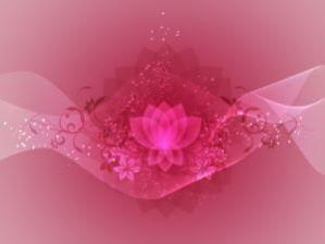 _meditate